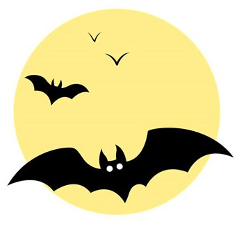 蝙蝠飞到是什么预兆 家里飞进蝙蝠风水解说